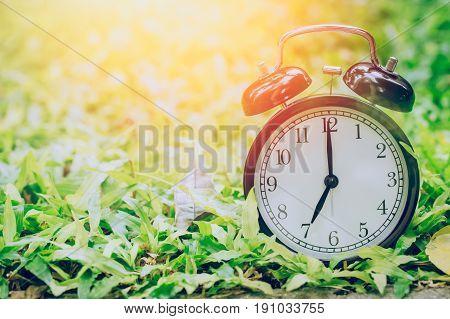 7 O'clock Retro Clock In The Garden Grass Field With Sun Light.