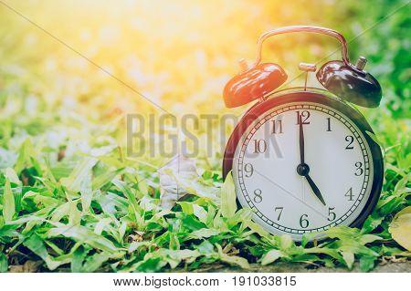 5 O'clock Retro Clock In The Garden Grass Field With Sun Light.