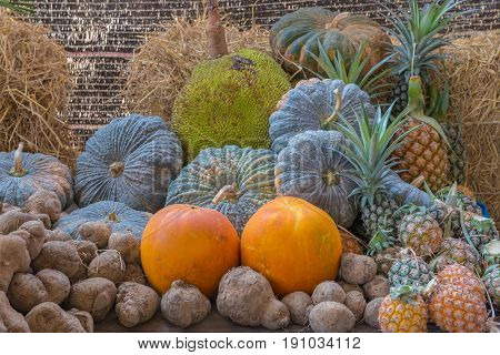 Jackfruit Pineapple Yam Taro Pumpkin Fruit In Garden
