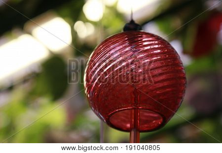 Japanese red glass wind chimes hanging from the ceiling