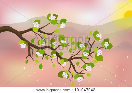 Blooming branch of japanese cherry, against the backdrop of the mountains and the rising sun, vector illustration