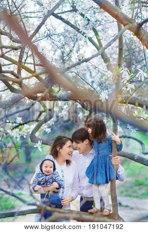 A beautiful family of mom dad daughter and half-year-old toddler embraces in the branches of blooming magnolia in early spring