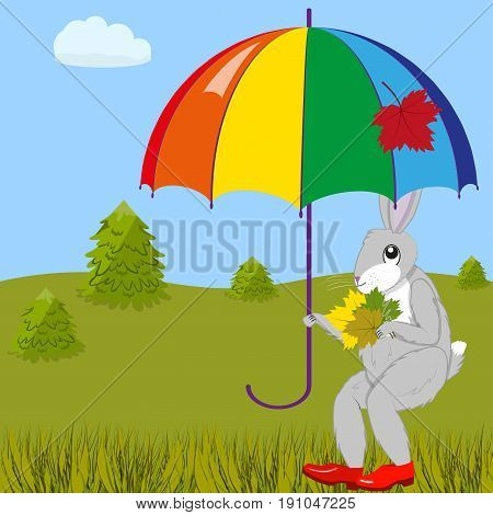 Hare under the umbrella collects autumn leaves in a forest glade, vector illustration
