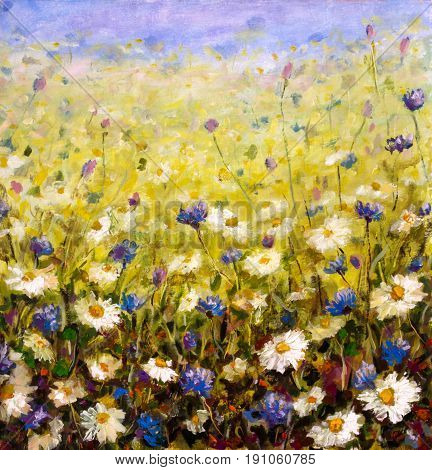 Original oil painting of flowers beautiful field flowers on canvas. Modern Impressionism.Impasto artwork.