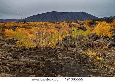 Volcanic area of Dimmuborgir in Iceland at autumn