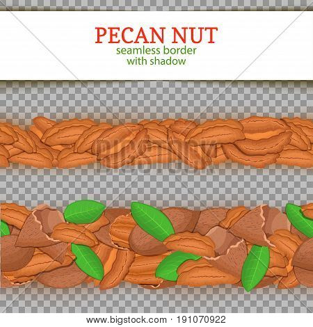 Pecan Horizontal seamless border. Vector illustration card. Wide and narrow endless strip with walnut nut fruit in the shell whole shelled leaves with shadow transparent. Infinite nut border