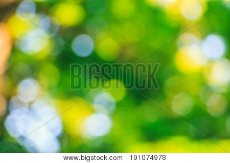 Summer background. Green and yellow bokeh. De-focused wallpaper