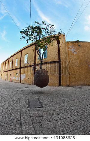 The well-known flowerpot suspended on cables with an orange tree. Old Yaffo. Israel