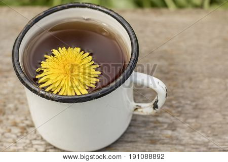 Tea made from yellow dandelion flowers (taraxacum officinale) in a white enameled old cup a spring warm day.