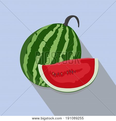 watermelons and slices isolated flat style, Fresh and juicy whole, watermelons  icon isolated , watermelons on a light Background, vector illustration.