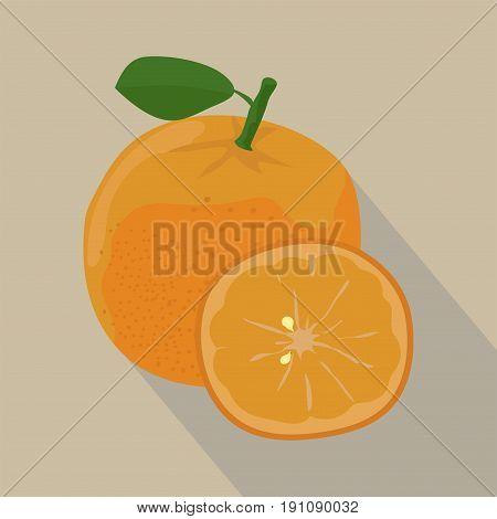 Orange and slices isolated flat style, whole, Orange icon isolated , Orange on a light Background, vector illustration.