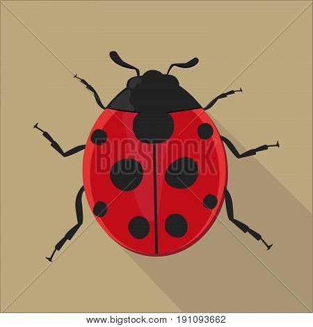 Ladybug isolated flat style, Ladybug icon isolated on background, Ladybug on a light Background, vector illustration.