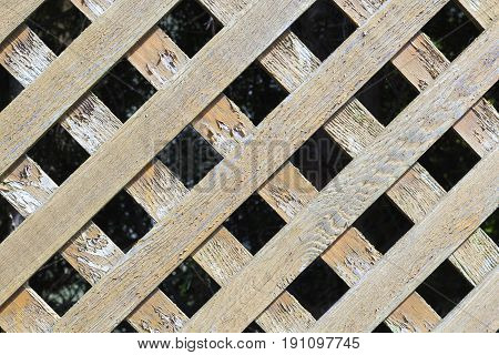 Old wooden lattice background and texture. Foto