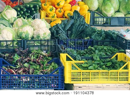 Plastic crates full with fresh organic vegetables on market stall