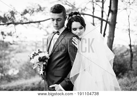 Beautiful Young Wedding Couple Admiring Each Other In A Pine Tree Forest. Black And White Photo.