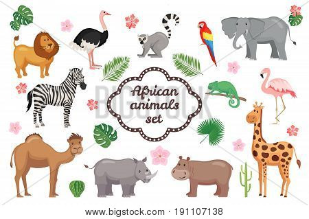 African animals set isolated on white background. Cartoon animals. Zoo collection. Vector illustration