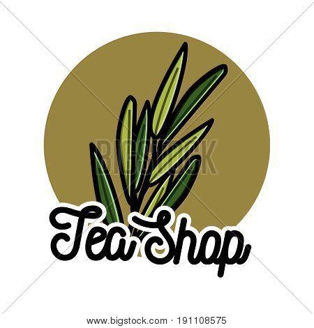 Color vintage tea shop emblem. Vector card design with tea. Tea house poster. Vector hand drawn set.