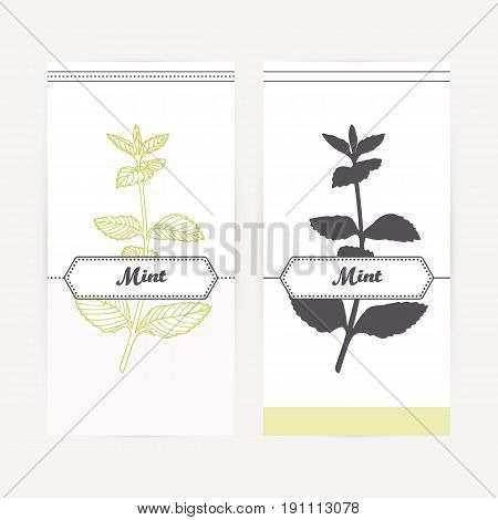 Mint seasoning. Hand drawn branch with leaves in outline and silhouette style. Spicy herbs retro labels collection for food packaging or kitchen design. Vector illustration
