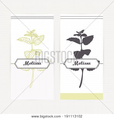 Melissa seasoning. Hand drawn branch with leaves in outline and silhouette style. Spicy herbs retro labels collection for food packaging or kitchen design. Vector illustration