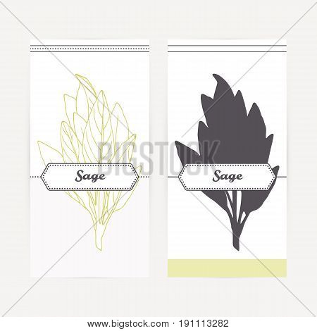 Sage seasoning. Hand drawn branch with leaves in outline and silhouette style. Spicy herbs retro labels collection for food packaging or kitchen design. Vector illustration