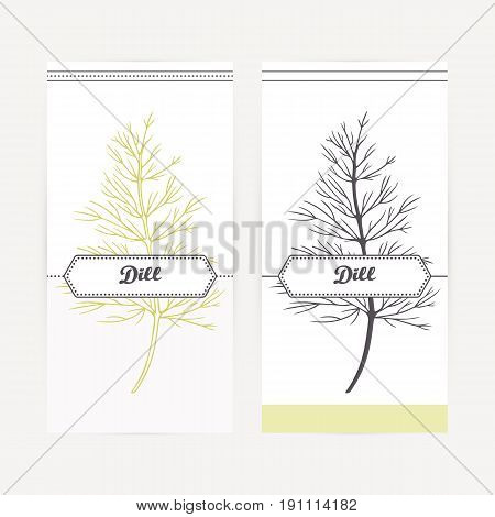 Dill seasoning. Hand drawn branch with leaves in outline and silhouette style. Spicy herbs retro labels collection for food packaging or kitchen design. Vector illustration