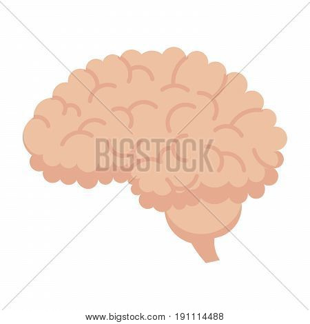 Neurosurgery icon with human brain, vector illustration in flat style