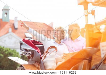 Middle-aged woman showing something to man while sitting in horse cart