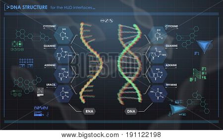 HUD infographic elements with DNA structure. Futuristic user interface. Abstract virtual graphic.