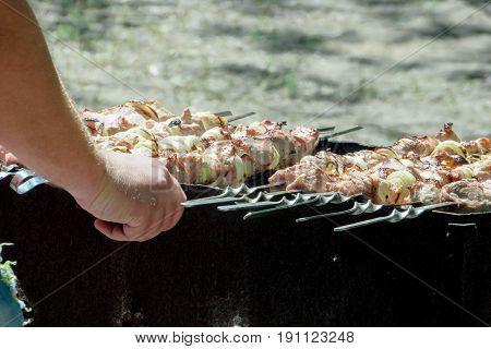 Meat shish kebab on skewers lie on the grill