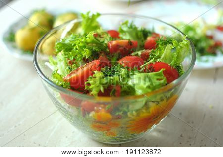 Fresh vegetable salad with tomato cucumber and salad frisee in glass bowl. Process of cooking. Close up selective focus.