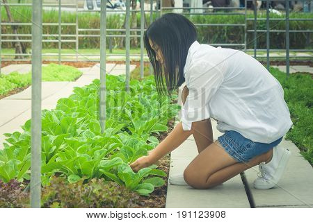 Side view woman hand holding sprout tree to prepare plant a tree on ground at outdoor garden. (Autumn filter effect)