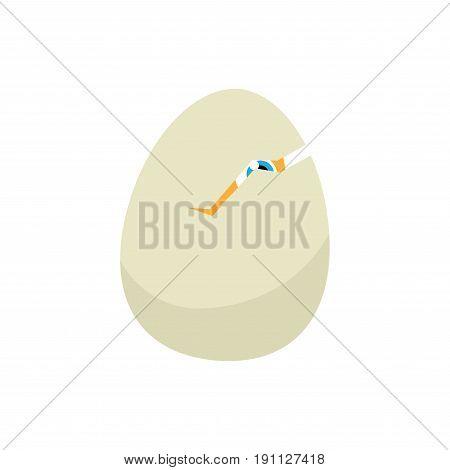 Easter eggs chicks. Easter background vector eps10