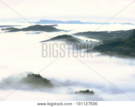 Heavy Mist In Landscape. Magnificent  Autumn Creamy Fog