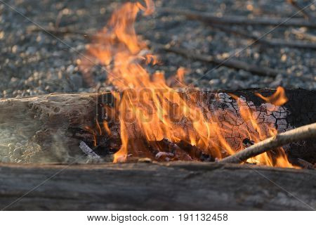 Bright flame of fire at the burning logs on the rocky shore