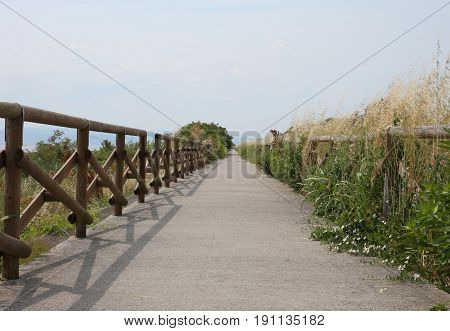 Cycle Path Along The Protected Nature Reserve With The Wooden Fe