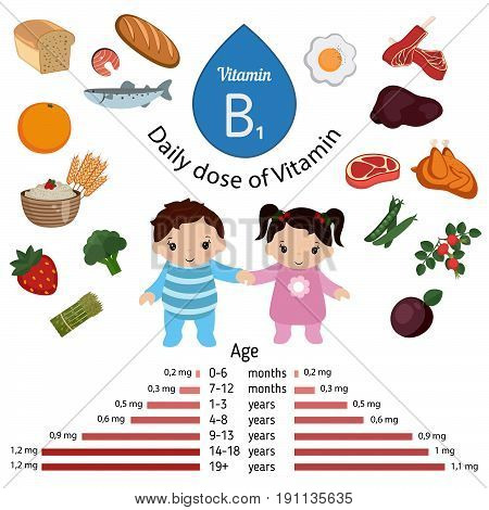Vitamin B1 or Thiamin and vector set of vitamin B1 rich foods. Healthy lifestyle and diet concept. Daily doze of vitamin B1.