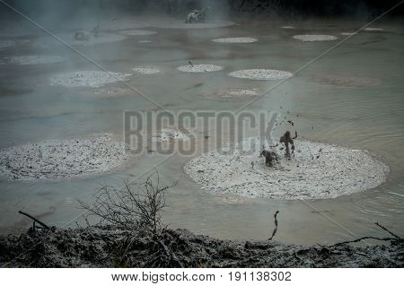 Bubbling Mud releasing Hydrogen Sulphide Gas. Geothermal Activity in Waitapu, New Zealand.