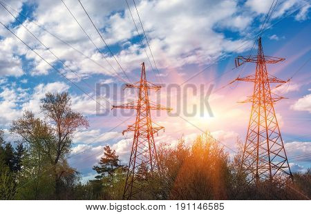 High-voltage lines against the blue sky green pine forest at sunset. electricity