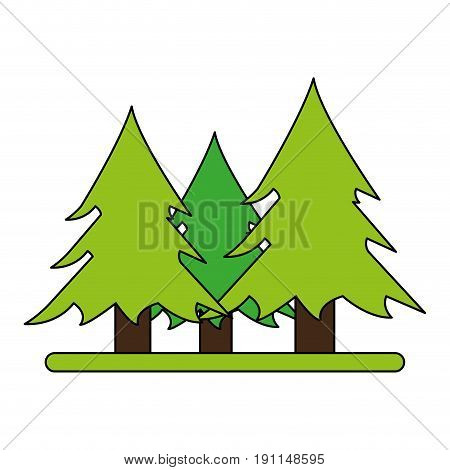 Wonderful trees forest icon vector illustration design graphic flat