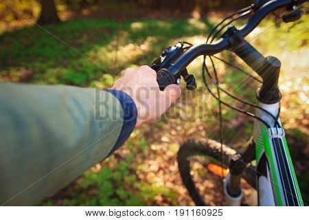 Hands hold the wheel of a bicycle in a green park on a sunny summer day. Bicycle in a green forest close up