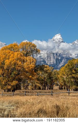 a scenic fall landscape in Grand Teton National Park Wyoming