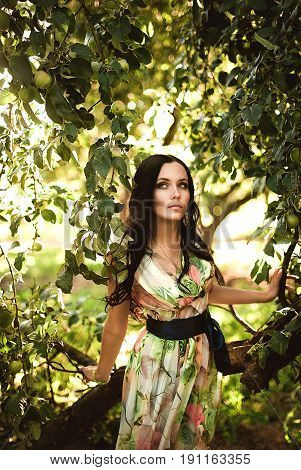 Woman in colorful maxi dress with box with apples in a sunny garden. Young smiling attractive woman is standing with full basket of organic apples in a sunlit orchard. Country happy lifestyle concept.