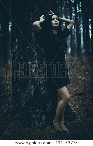 Portrait Of A Beautiful Mysterious Woman In The Forest. Cold Ton
