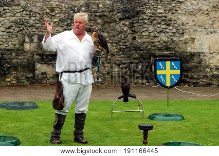Beaulieu, Hampshire, Uk - May 29 2017: Falconer With His Buzzard, Equipment And Another Bird, Explai