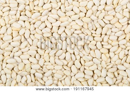 Dried white bean legumes frame filling background texture