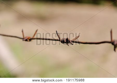 Barbed wire. A barbed wire to deserts. Barbed wire macro