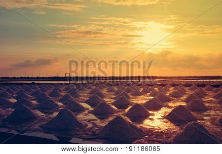 Salt pan or salt field Landscape of salt farming field in Sun rise