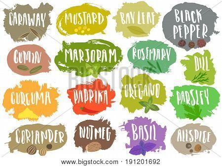 Vector set of trendy emblems for spices packing. Various natural herbal seasoning for food preparation with handwritten lettering on blots.