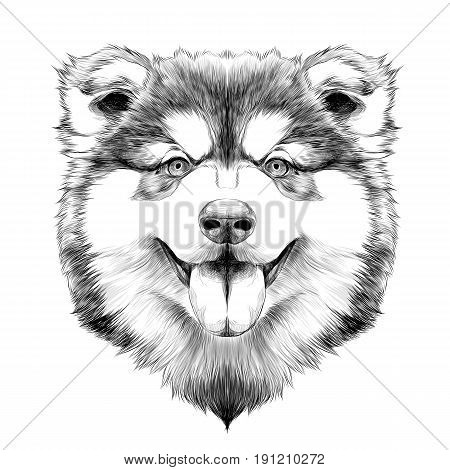dog breed Alaskan Malamute puppy with his tongue hanging out head looking right symmetry sketch vector graphics black and white drawing