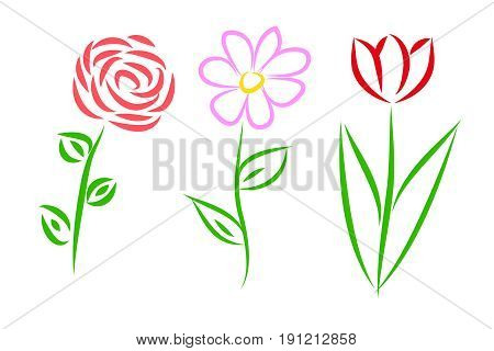 Set of three schematic flowers - rose daisy and tulip. Isolated objects on white background vector illustration